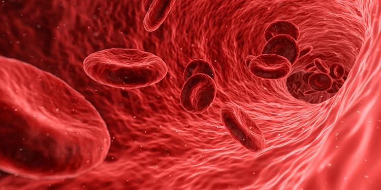 بیماری تالاسمی و انواع درمان آن چیست؟
