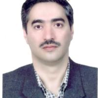 میرمحمدحسین علی شریفیان دوائی