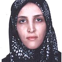 زینب ملک زاده