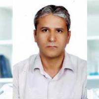 محمد حسن حیدری